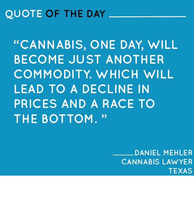 The Contrarian Cannabis Lawyer in Texas: Interview with Daniel Mehler